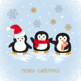 Merry Christmas card design with cute doodle penguins. Royalty Free Stock Images