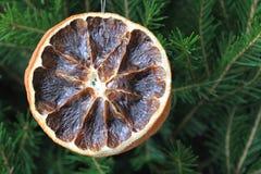 Merry christmas card with dry orange. On the xmas tree Stock Photo