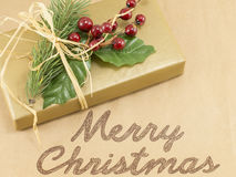 Merry Christmas card with mistletoe and present Royalty Free Stock Images