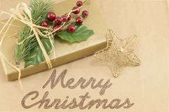 Merry Christmas card with mistletoe and present Royalty Free Stock Photos