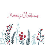 Merry Christmas card with red berries and branches Stock Image