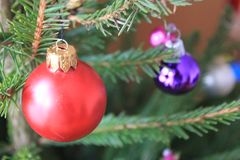 Merry christmas card with red ornaments. Merry christmas card with red and violet ornaments on the xmas tree Royalty Free Stock Photos