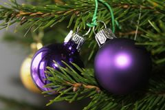 Merry christmas card with red ornaments. Merry christmas card with violet ornaments on the xmas tree Royalty Free Stock Photography