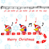 Merry christmas card,said the jingle bells song birds Stock Photography
