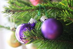 Merry christmas card with violet ornaments. Merry christmas card with violet ornament on the xmas tree Royalty Free Stock Images