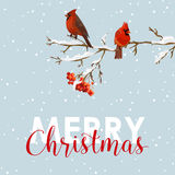 Merry Christmas Card - Winter Birds with Rowan Berries Royalty Free Stock Photos
