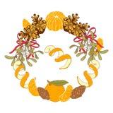 Merry christmas card. Christmas wreath with mandarins and mistletoe, cones, peel. vector illustration hand-drawn, element design, retro style Royalty Free Illustration
