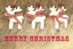 Merry Christmas card written text Royalty Free Stock Photos