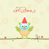 Merry Christmas celebration concept with cute love bird in santa Royalty Free Stock Image