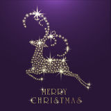 Merry Christmas celebration greeting card with reindeer. Royalty Free Stock Photo