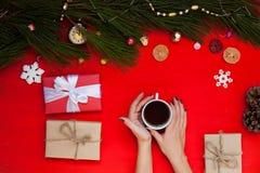 Merry Christmas Christmas greeting gifts holiday Christmas tree cones stock photography