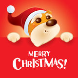 Merry Christmas! Christmas puppy with big sign. Royalty Free Stock Image