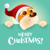 Merry Christmas! Christmas puppy with big sign. Royalty Free Stock Photography