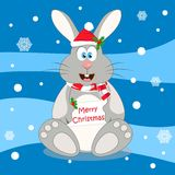 Merry Christmas. Christmas rabbit. Smiling rabbit with a wish Merry Christmas Royalty Free Stock Photos