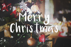 Merry Christmas Christmas tree in the background Royalty Free Stock Image