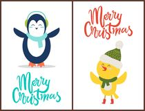 Merry Christmas Congratulation from Happy Birds. Dressed in knitted scarfs, hats and warm headphones. Vector illustration with penguin and chicken Stock Image