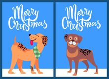 Merry Christmas Congratulation from Happy Pets Royalty Free Stock Photos