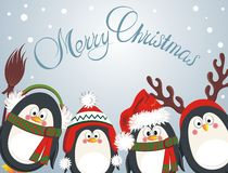Merry Christmas cute penguins Royalty Free Stock Images