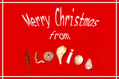Merry Christmas from Florida Royalty Free Stock Image