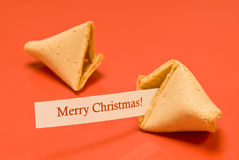 Merry Christmas Fortune Cookie Royalty Free Stock Images
