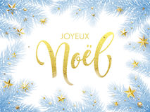 Merry Christmas in French Joyeux Noel greeting card, poster. Merry Christmas in French Joyeux Noel greeting card. Joyeux Noel poster template of pine and fir Royalty Free Stock Photos