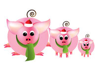 Merry Christmas From Three Pink Piggies On A White Royalty Free Stock Photography