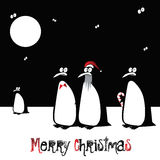 Merry Christmas funny bird penguin Stock Photos