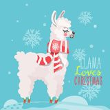 Merry Christmas funny card with llama. Merry Christmas funny card. Cute, hand drawn llama in cartoon flat style. Beautiful and funny white llama with Christmas Royalty Free Stock Images