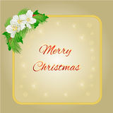 Merry Christmas gold frame with jasmine flowers and pine branches vector. Merry Christmas decoration  gold frame with flowers and holly with berries and pine Stock Photo