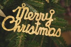Merry christmas gold gleaming inscription. On a fir tree. Green New Year or Christmas background.Close up royalty free stock photo