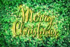 Merry Christmas on green pine tree branches. Merry Christmas - gold sign on natural green pine tree branches background. Postcard or poster design concept royalty free stock photography