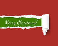 Merry Christmas green vector torn edge template and paper roll with rough fringe. Hole in red cardboard teared sides so Royalty Free Stock Images