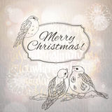 Merry Christmas greeting card with bullfinches  Royalty Free Stock Photo