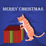 Merry Christmas greeting card cat in box Stock Photo
