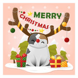 Merry Christmas Greeting Card with cat wearing reindeer costume Stock Photography
