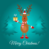 Merry Christmas  greeting  card  with cute  reindeer. Royalty Free Stock Image