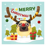 Merry Christmas Greeting Card with dog wearing reindeer costume Royalty Free Stock Photos