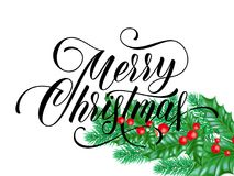 Merry Christmas greeting card of holy leaf branch on winter holiday snow white background. Vector calligraphy wish text lettering Stock Photography
