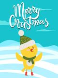 Merry Christmas Greeting Card with Yellow Chicken. In scarf icon isolated on winter landscape. Vector of happy bird in green knitted hat with bubo Stock Images