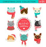 Merry Christmas Greetings With Cute Cats Characters, Vector Collectionn Royalty Free Stock Images
