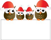 Merry christmas a group pf adorable owls holding a sign Royalty Free Stock Photo
