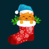 Merry Christmas and happy new year, animals holiday Cat in Santa xmas Sock Vector Illustration Royalty Free Stock Photos