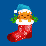 Merry Christmas and happy new year, animals holiday Cat in Santa xmas Sock Vector Illustration Stock Images