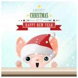 Merry Christmas and Happy New Year background with cat standing behind window Royalty Free Stock Images