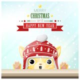 Merry Christmas and Happy New Year background with cat standing behind window Royalty Free Stock Photography