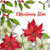 Merry Christmas and Happy New Year background with poinsettia. Vector illustration vector illustration