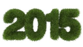 2015 Merry Christmas and Happy New Year. 3d grass stock illustration