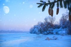 Merry christmas and happy new year greeting background. With copy-space.Winter landscape with snow and christmas trees Royalty Free Stock Photography
