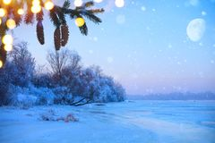 Merry christmas and happy new year: greeting background.Winter. Landscape with snowy christmas trees and holidays light Stock Image
