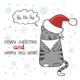 Merry Christmas and Happy New Year greeting card design. Cute cat with beard and Santa hat. Royalty Free Stock Image